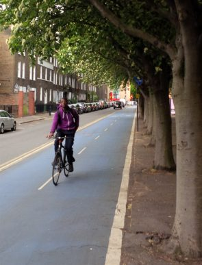 Cyclist in a cycling lane